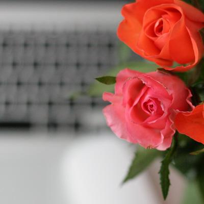 Rosen rechts